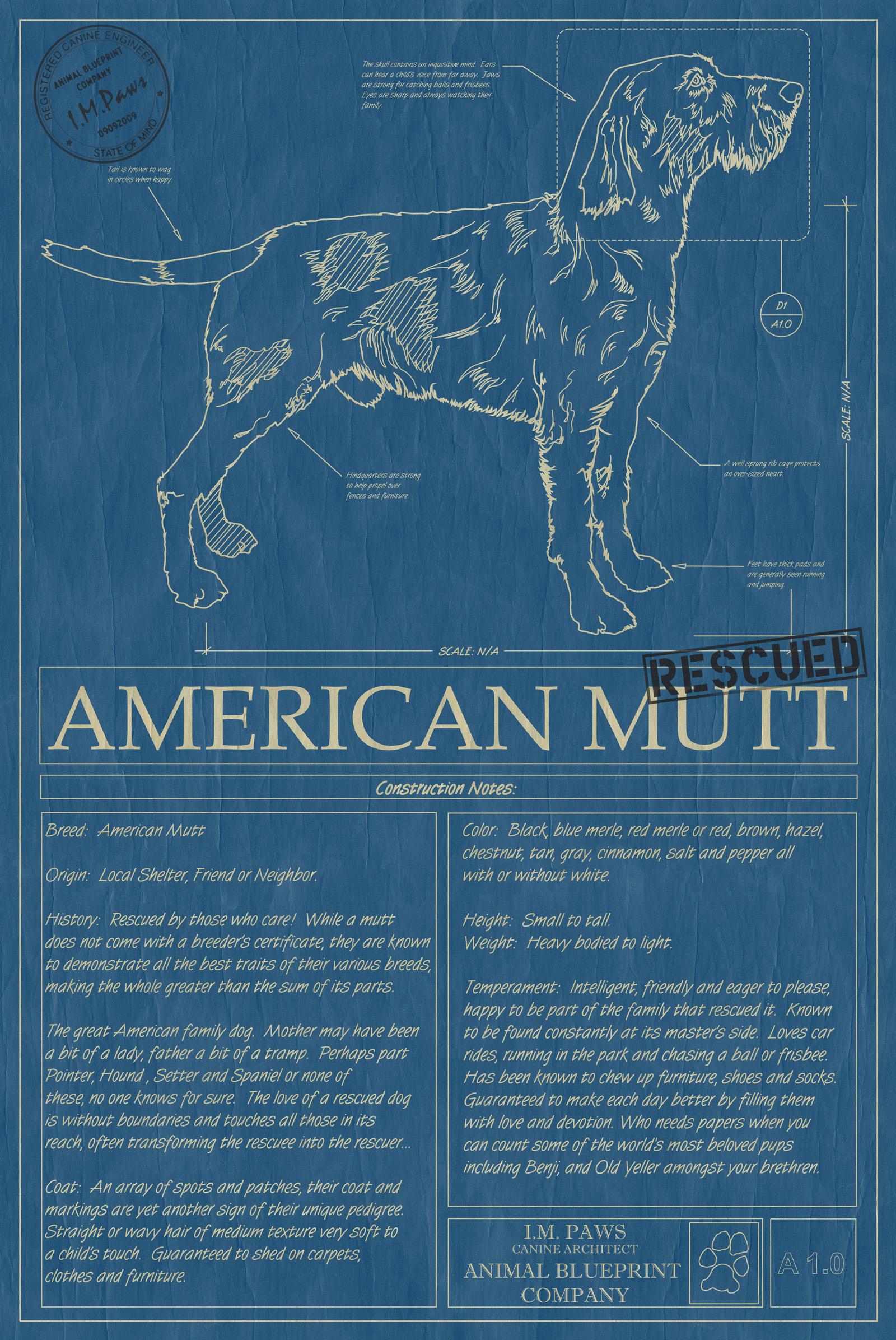 American Mutt #18 - Animal Blueprint Company