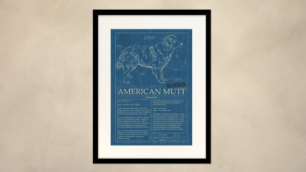 American Mutt Dog Wall Blueprint