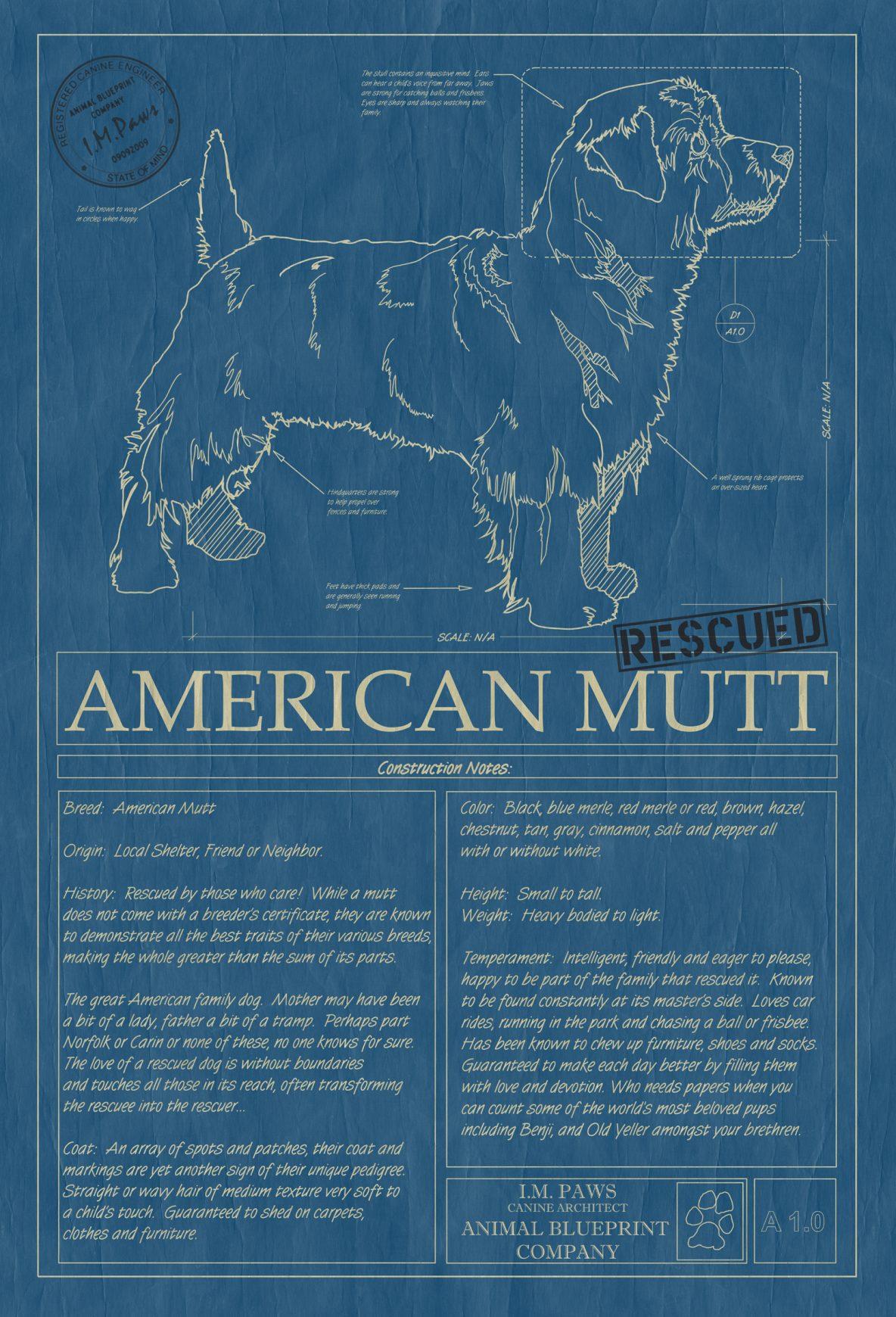 American Mutt Dog Blueprint