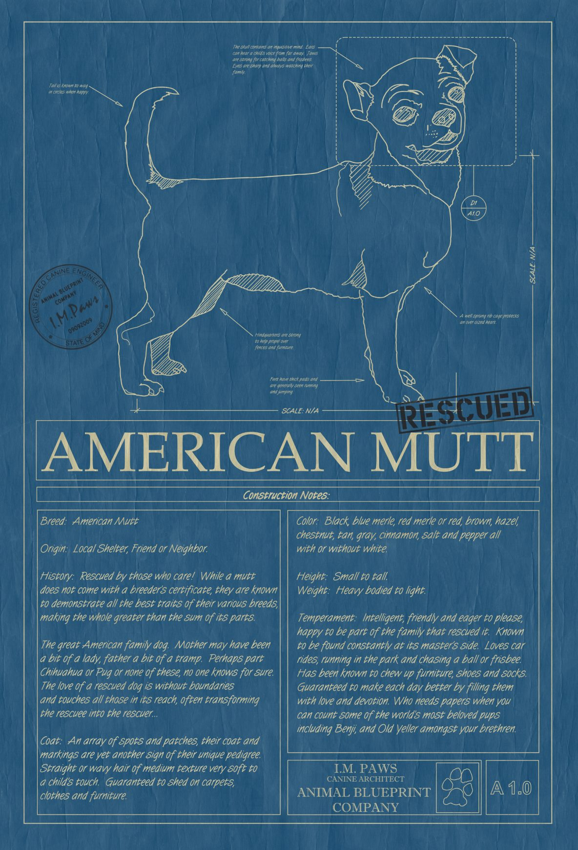 Products archive animal blueprint company american mutt dog blueprint malvernweather Choice Image