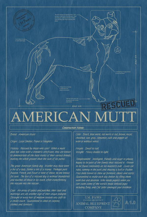 American Mutt Dog Blueprint