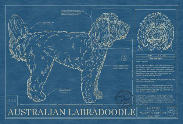 Australian Labradoodle Dog Blueprint