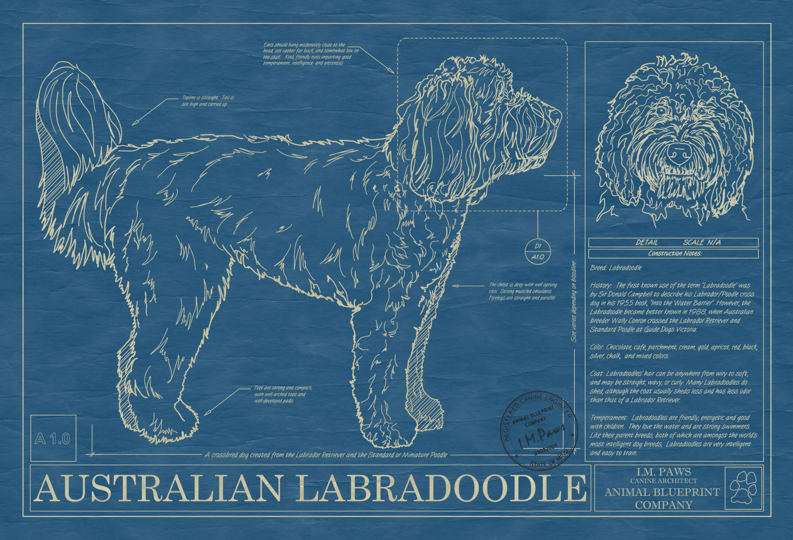 Australian Labradoodle Animal Blueprint Company