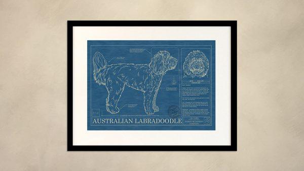 Australian Labradoodle Dog Wall Blueprint