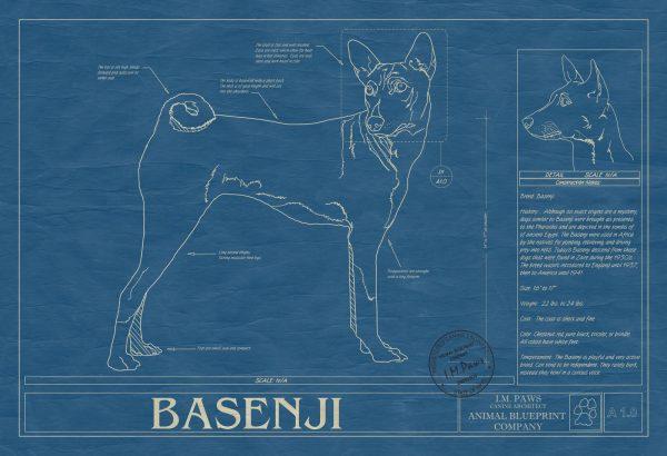 Basenji Dog Blueprint
