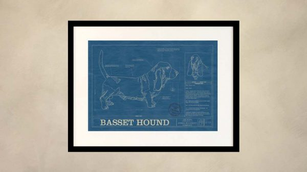 Basset Hound Dog Wall Blueprint