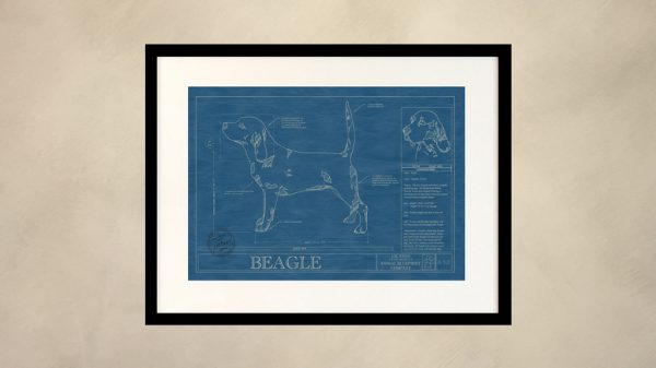 Beagle Dog Wall Blueprint