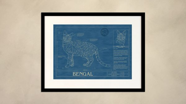 Bengal Cat Wall Blueprint