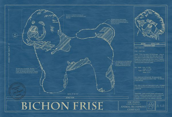 Bichon Frise Dog Blueprint