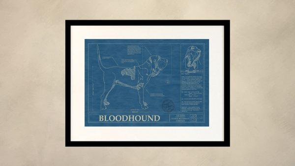 Bloodhound Dog Wall Blueprint