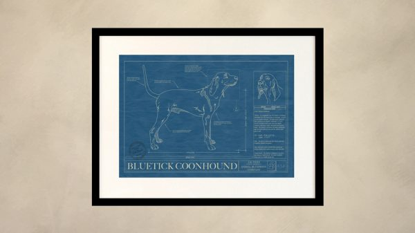 Bluetick Coonhound Dog Wall Blueprint