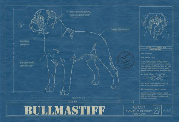 Bullmastiff Dog Blueprint