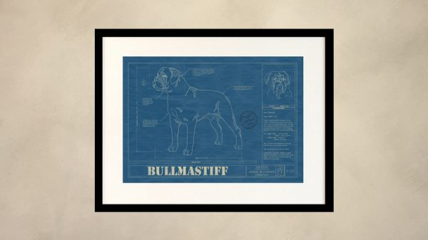 Bullmastiff Dog Wall Blueprint