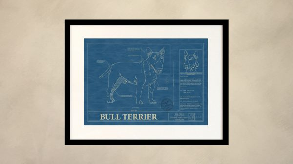 Bull Terrier Dog Wall Blueprint