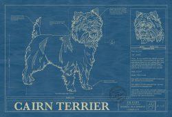 Cairn Terrier Dog Blueprint