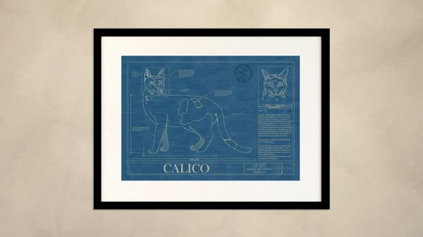 Calico Cat Wall Blueprint