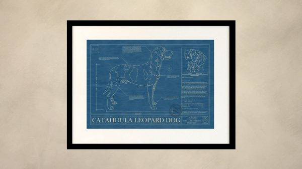 Catahoula Leopard Dog Wall Blueprint