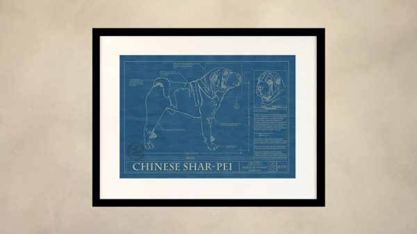 Chinese Shar-Pei Dog Wall Blueprint
