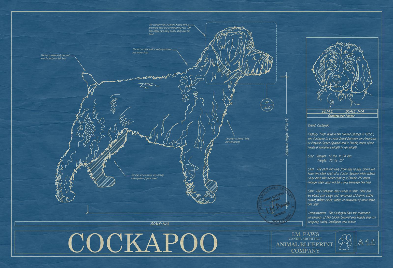Cockapoo animal blueprint company cockapoo dog blueprint malvernweather Gallery