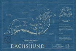 Dachsund Longhaired Dog Blueprint