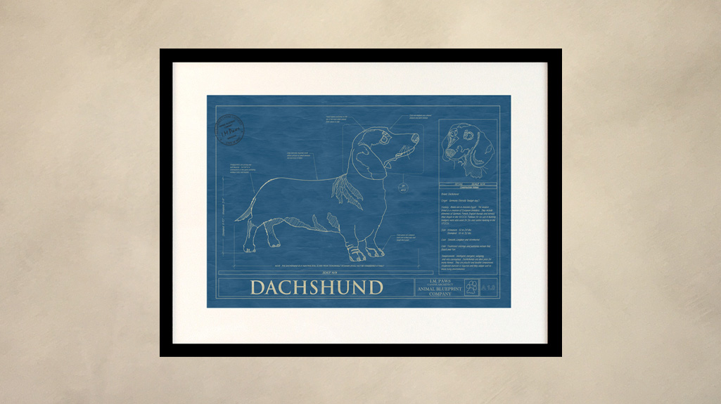 Dachsund Dog Wall Blueprint