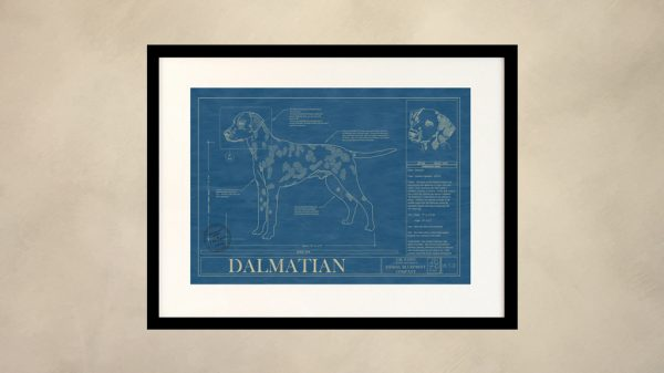 Dalmatian Dog Wall Blueprint