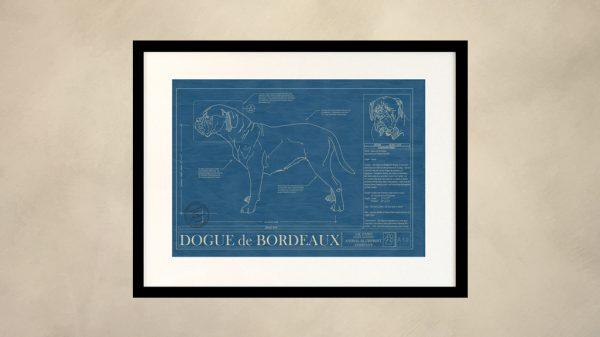 Dogue de Bordeaux Dog Wall Blueprint
