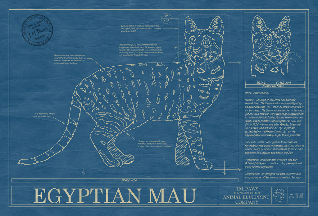 Egyptian Mau Cat Blueprint