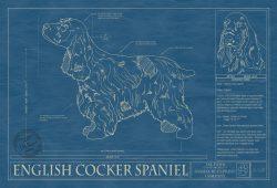 English Cocker Spaniel Dog Blueprint