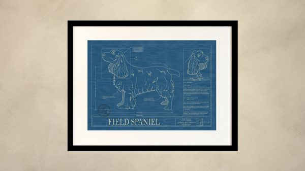 Field Spaniel Dog Wall Blueprint