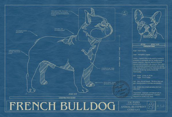 French Bulldog Dog Blueprint