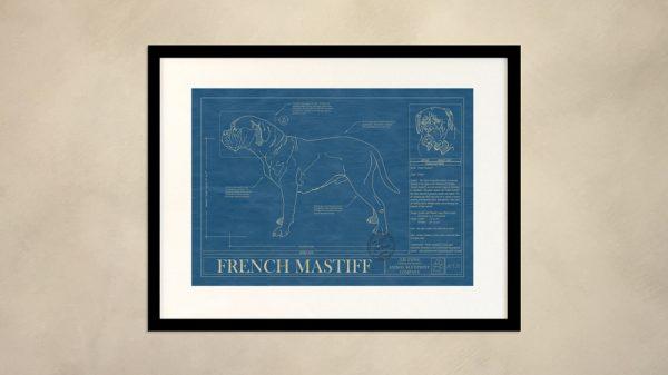 French Mastiff Dog Wall Blueprint
