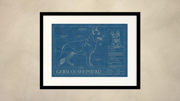 German Shepherd Dog Wall Blueprint