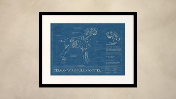 German Wirehaired Pointer Dog Wall Blueprint