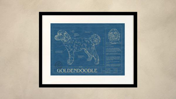 Golden Doodle Dog Wall Blueprint