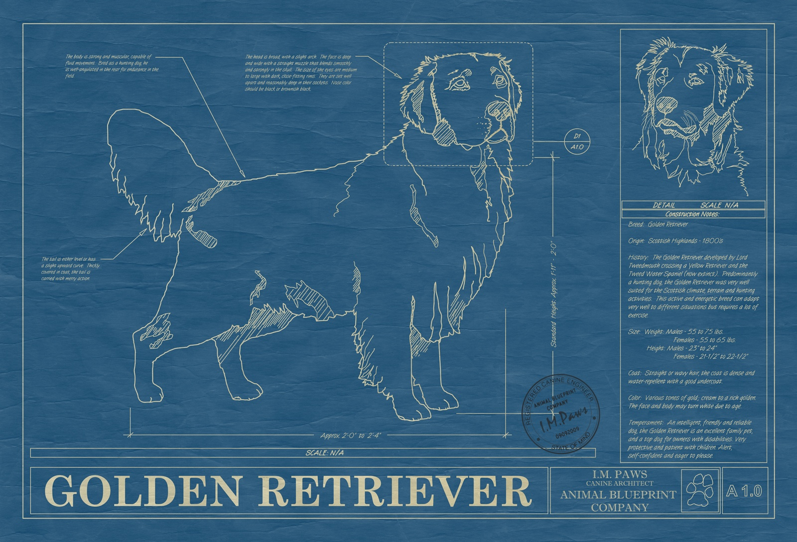 Home page animal blueprint company our prints are drawn to the exact characteristics of your favorite animal malvernweather Images
