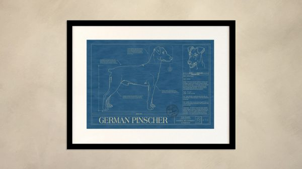 German Pinscher Dog Wall Blueprint