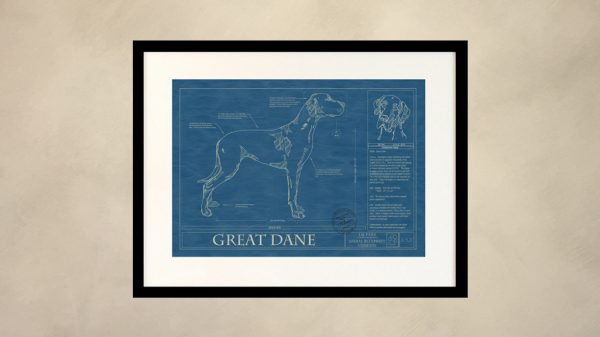 Great Dane Dog Wall Blueprint