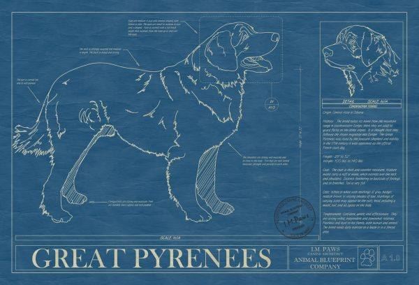 Great Pyrenees Dog Blueprint