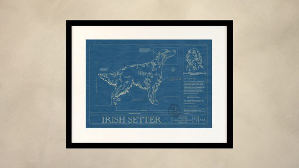 Irish Setter Dog Wall Blueprint