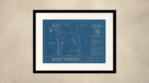 Irish Terrier Dog Wall Blueprint