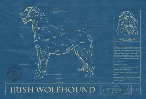 Irish Wolfhound Dog Blueprint