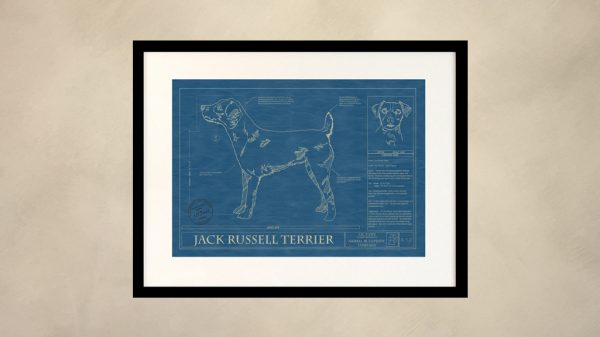 Jack Russell Terrier Dog Wall Blueprint