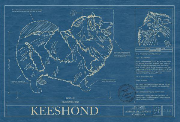 Keeshond Dog Blueprint
