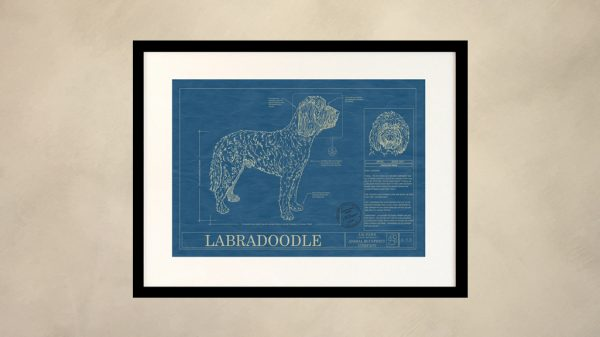 Labradoodle Dog Wall Blueprint