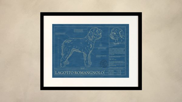 Lagotto Romangnolo Dog Wall Blueprint
