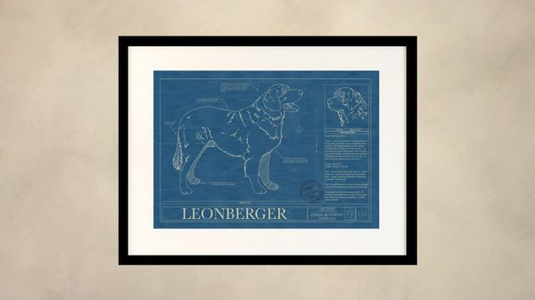Leonberger Dog Wall Blueprint
