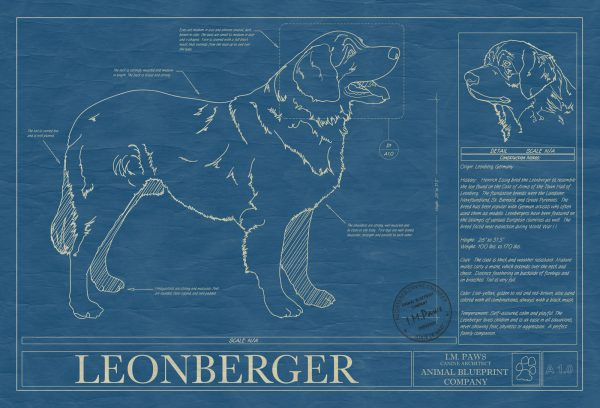Leonberger Dog Blueprint