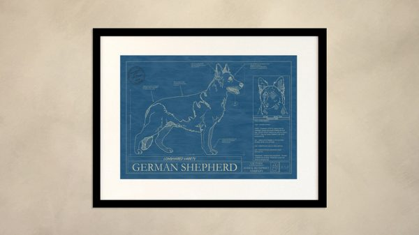 German Shepherd Dog Wall Blueprint