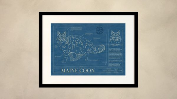 Maine Coon Cat Wall Blueprint